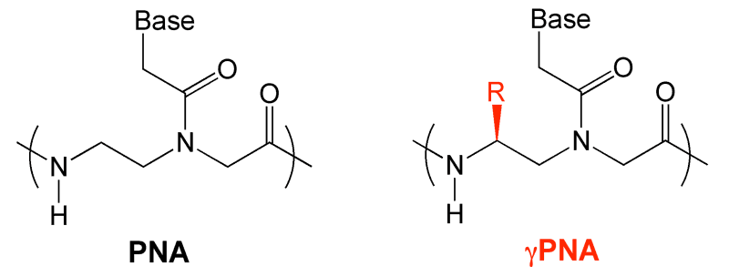 synthesis of benzocaine mechanism 15 – multi-step synthesis of benzocaine 151 reaction mechanism: nucleophilic nitrogen attacks the first electrophilic carbonyl (c=o) on acetic anhydride.